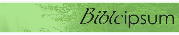 http://bibleipsum.free.fr/style/image/logo-600x120.png